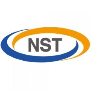 株式会社NSTの企業ロゴ